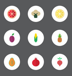 Flat icons orange lime ananas and other vector