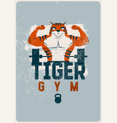 Gym sport club grunge poster with muscular tiger vector