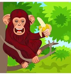 Happy monkey chimp vector