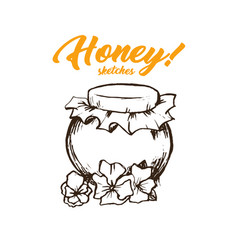 Honey sketches glass bottle honey hand drawn vector