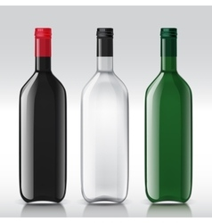 Realistic sample glass bottles empty transparent vector