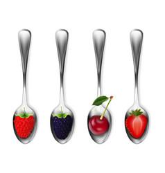 set of metal spoons with berries strawberries vector image