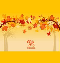 yellow autumn background vector image