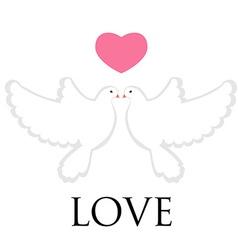 Pair pigeon love vector image vector image