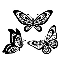set of beautiful black and white lace butterflies vector image