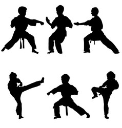young karate boys vector image