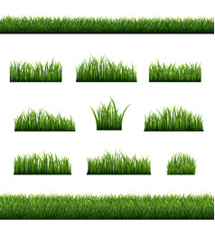 Big green grass frame set isolated white vector