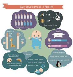 Child development infographics vector image