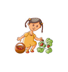 girl collecting strawberries into basket vector image