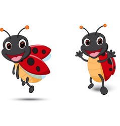 happy lady bug cartoon vector image