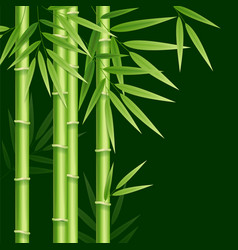 Realistic 3d detailed bamboo japanese or chinese vector