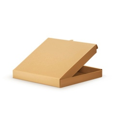 Cardboard box for pizza vector image vector image