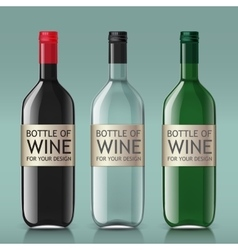 Realistic of glass bottles for wine vector image vector image