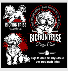 Bichon frise - set for t-shirt logo and vector