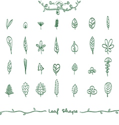 Doodle Leaf Shape Outline vector