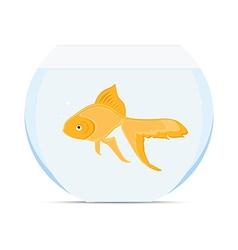goldfish in bowl vector image