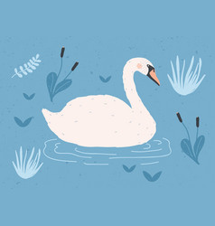 Gorgeous lonely white swan swimming in water of vector