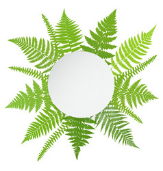 Jungle poster Fern frond background vector image