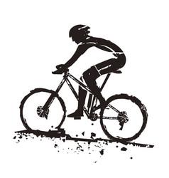 mountain bike rider vector image