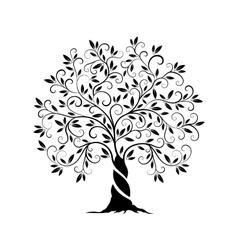 Olive tree outline curl silhouette vector