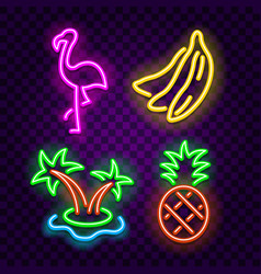 tropical symbols neon signs on dark background vector image