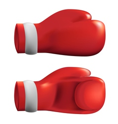 Red Box gloves vector image vector image