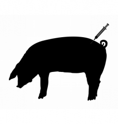 swine gets an inoculation vector image