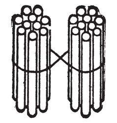 2 bundles of ten sticks vintage vector