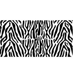 Animal print zebra texture black and white pattern vector