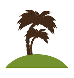 beach with tree palm vector image
