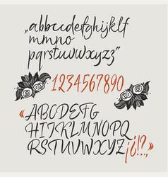 Calligraphic elegant brush font vector