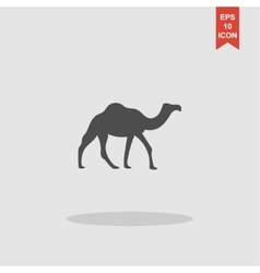 Camel Icon concept for design vector