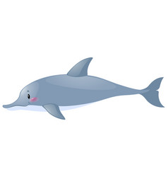 Cute dolphin on white background vector