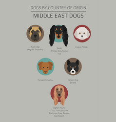 dogs by country of origin near east dog breeds vector image