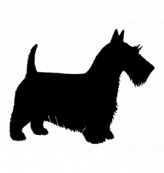 scottish terrier silhouette vector image