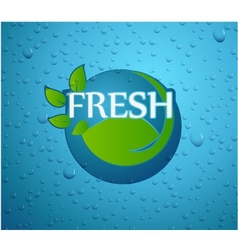 fresh - nature with green leaf on wall glass vector image