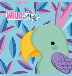 bird wildlife animal cartoon vector image