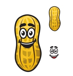 Happy little cartoon peanut or ground nut vector image