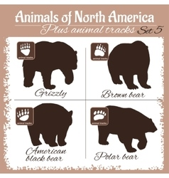 North America animals and animal tracks vector image