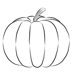 Outline pumpkin black fine lines and spine vector