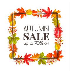 Seasonal autumn banner vector