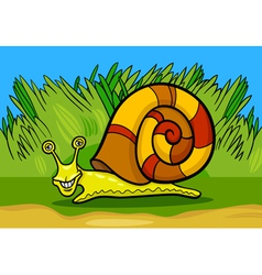 Snail mollusk cartoon vector