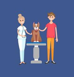 veterinarian doctor in vet clinic with patient vector image
