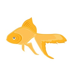 Rrealistic goldfish vector image