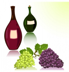 bottles of wine and grapes vector image