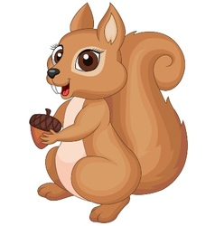 Cute cartoon Squirrel holding a corn vector image