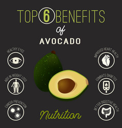 Avocado health benefits vector