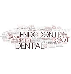 endodontic word cloud concept vector image
