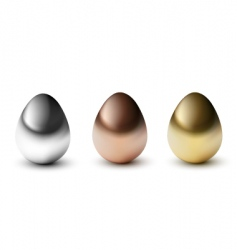 metal eggs vector image