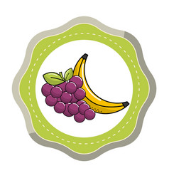 sticker grape and babana fruit icon vector image